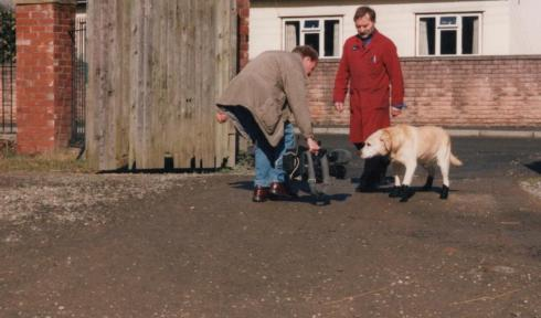 bertie-dog-boot-filming